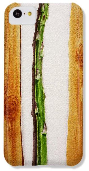 Asparagus Tasty Botanical Study IPhone 5c Case