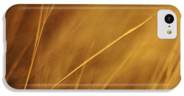 Aurum IPhone 5c Case by Priska Wettstein
