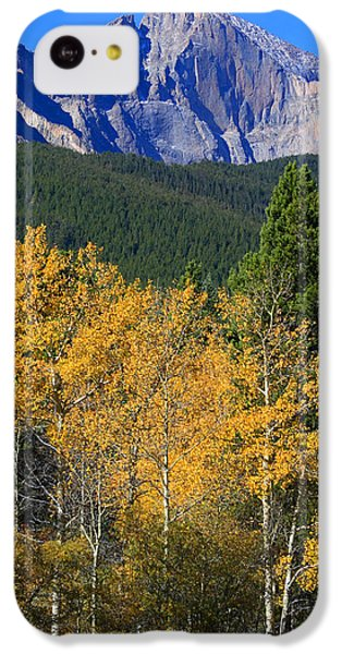 Autumn Aspens And Longs Peak IPhone 5c Case by James BO  Insogna