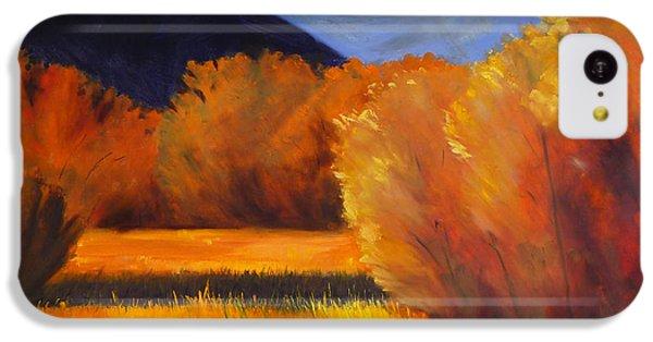 Autumn Field IPhone 5c Case