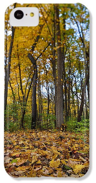 IPhone 5c Case featuring the photograph Autumn Is Here by Sebastian Musial