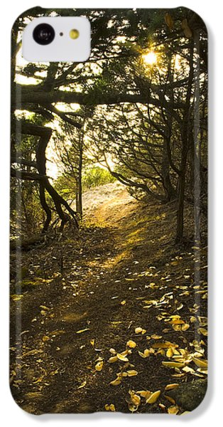IPhone 5c Case featuring the photograph Autumn Trail In Woods by Yulia Kazansky