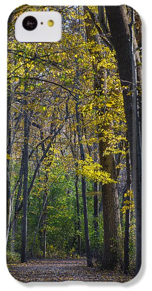 IPhone 5c Case featuring the photograph Autumn Trees Alley by Sebastian Musial