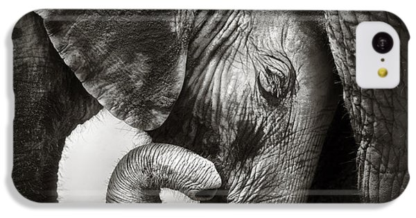 Baby Elephant Seeking Comfort IPhone 5c Case by Johan Swanepoel