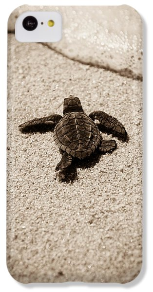 Baby Sea Turtle IPhone 5c Case