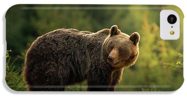 Backlit Bear IPhone 5c Case
