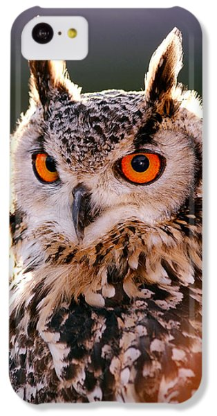Backlit Eagle Owl IPhone 5c Case by Roeselien Raimond