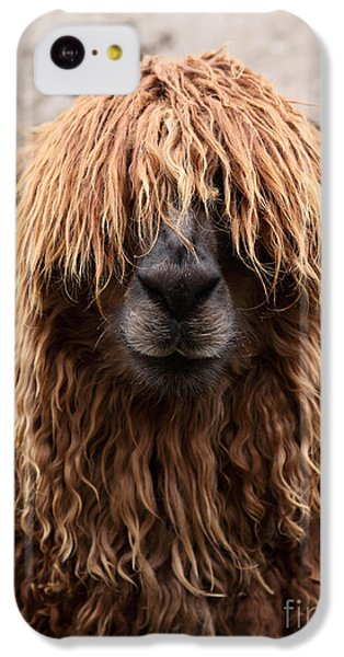 Bad Hair Day IPhone 5c Case