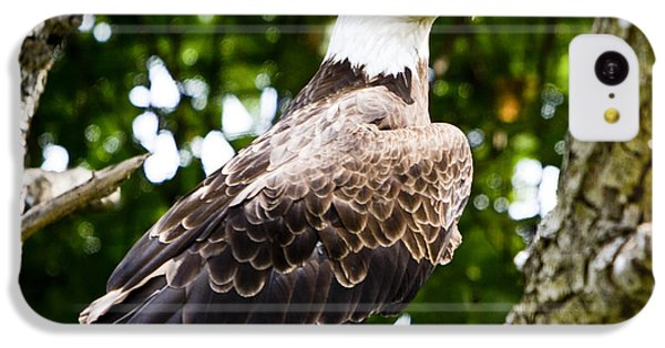 IPhone 5c Case featuring the photograph Bald Eagle by Ricky L Jones