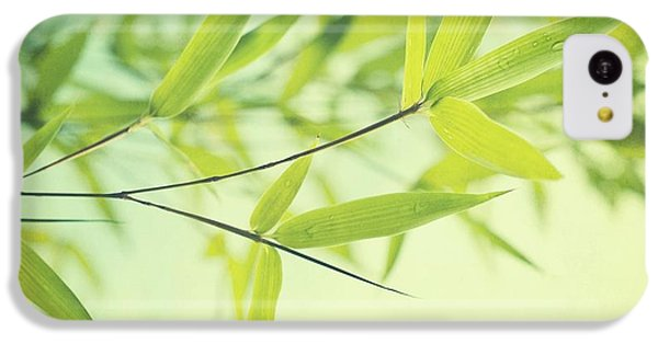 Bamboo In The Sun IPhone 5c Case by Priska Wettstein