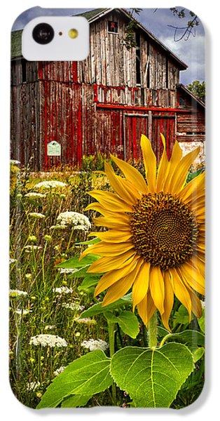 Sunflower iPhone 5c Case - Barn Meadow Flowers by Debra and Dave Vanderlaan