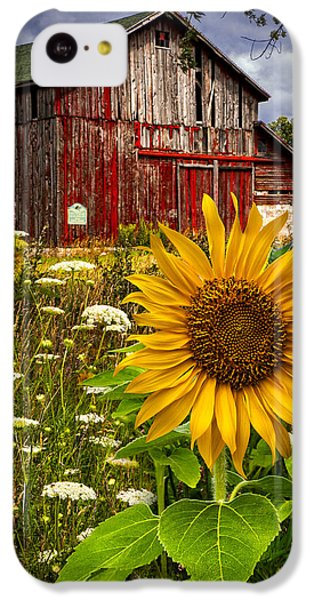 Sunflower iPhone 5c Case - Barn Meadow Flowers by Debra and Dave Vanderlaan