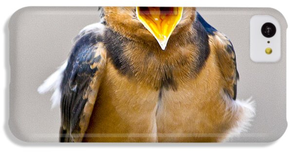 IPhone 5c Case featuring the photograph Barn Swallow by Ricky L Jones