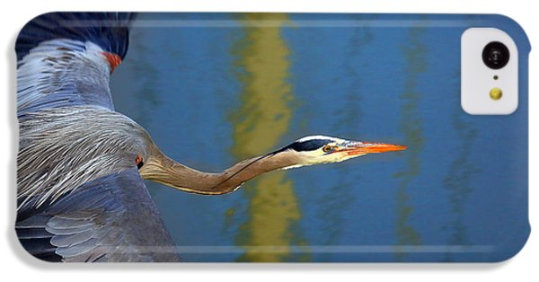 Bay Blue Heron Flight IPhone 5c Case by Robert Bynum