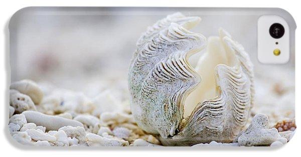 Beach iPhone 5c Case - Beach Clam by Sean Davey