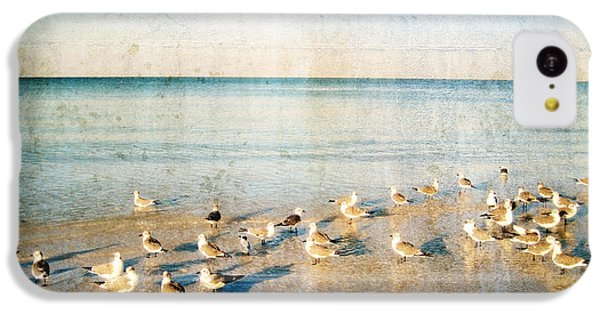 Beach Combers - Seagull Art By Sharon Cummings IPhone 5c Case by Sharon Cummings