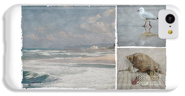 Beach Triptych 1 IPhone 5c Case by Linda Lees