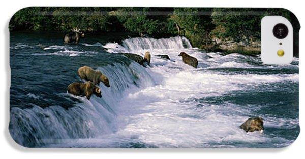 Bears Fish Brooks Fall Katmai Ak IPhone 5c Case