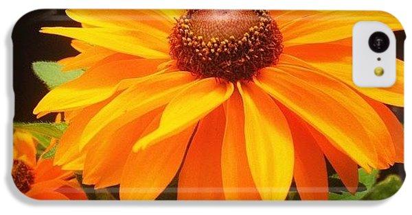 Beautiful iPhone 5c Case - Beautiful Flower #iphone5 #instagram by Scott Pellegrin