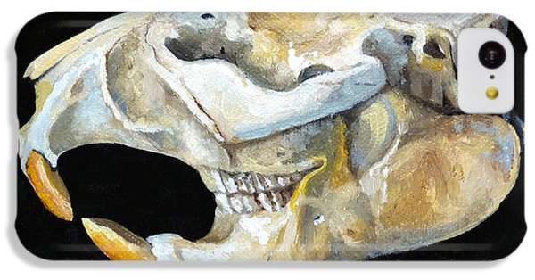 Beaver Skull 1 IPhone 5c Case by Catherine Twomey
