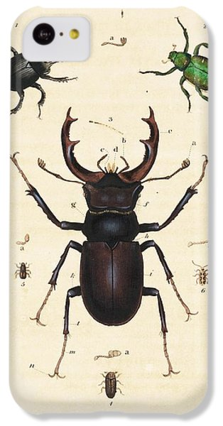 Minotaur iPhone 5c Case - Beetles by King's College London
