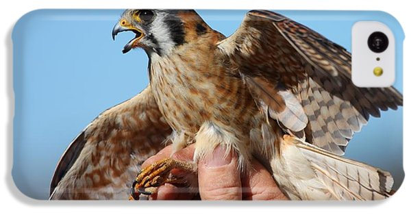 IPhone 5c Case featuring the photograph Behold The American Kestrel by Nathan Rupert