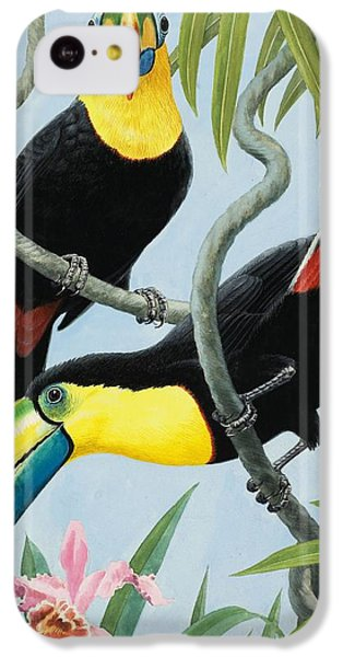 Big-beaked Birds IPhone 5c Case by RB Davis