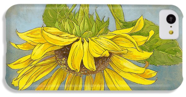 Big Sunflower IPhone 5c Case by Tracie Thompson