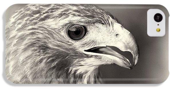 Bird Of Prey IPhone 5c Case by Dan Sproul