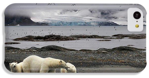 Polar Bear iPhone 5c Case - Birds by Mathilde Collot