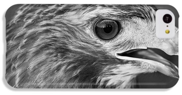 Black And White Hawk Portrait IPhone 5c Case