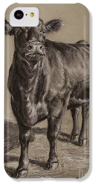 Cow iPhone 5c Case - Black Angus Cow 1 by Nicole Troup