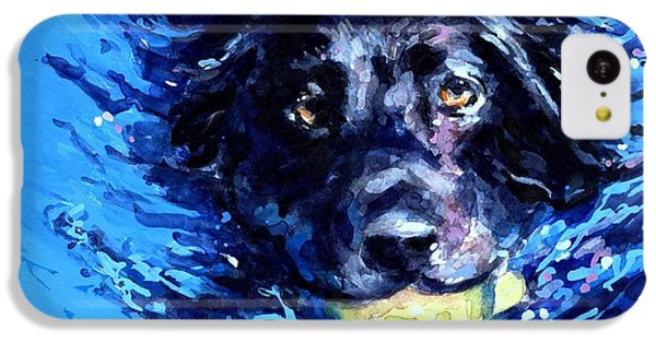 Black Lab  Blue Wake IPhone 5c Case by Molly Poole