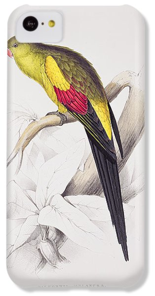 Black Tailed Parakeet IPhone 5c Case by Edward Lear