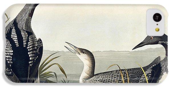 Black Throated Diver  IPhone 5c Case by John James Audubon