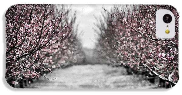 Blooming Peach Orchard IPhone 5c Case by Elena Elisseeva