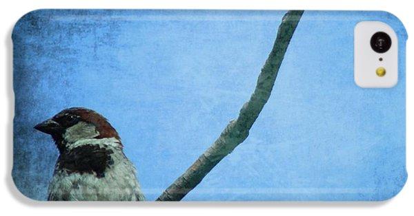 Sparrow On Blue IPhone 5c Case
