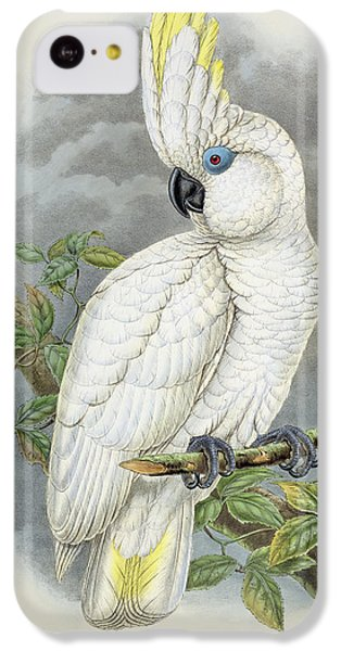 Blue-eyed Cockatoo IPhone 5c Case