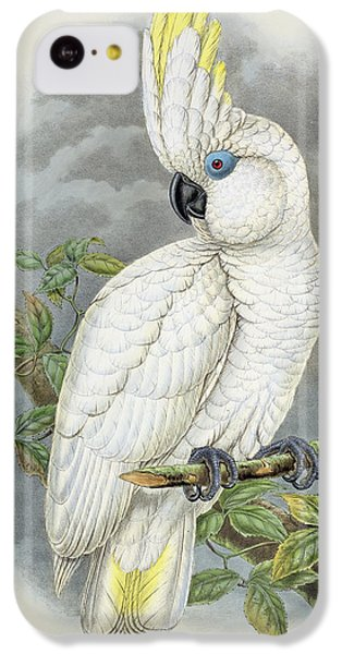 Blue-eyed Cockatoo IPhone 5c Case by William Hart