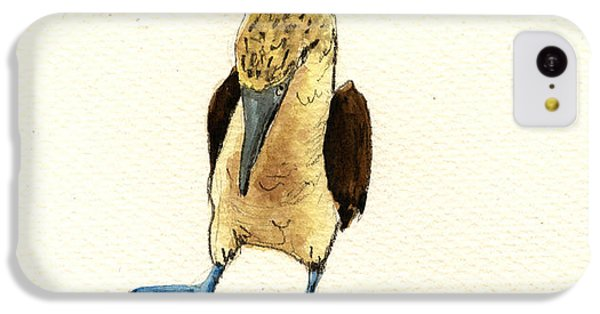 Blue Footed Booby IPhone 5c Case by Juan  Bosco