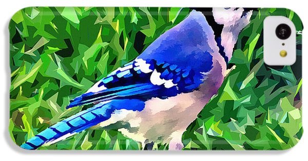 Blue Jay IPhone 5c Case by Stephen Younts