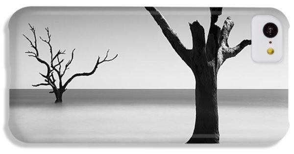 Bull iPhone 5c Case - Boneyard Beach - IIi by Ivo Kerssemakers