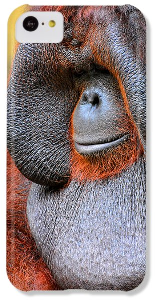 Bornean Orangutan Vi IPhone 5c Case