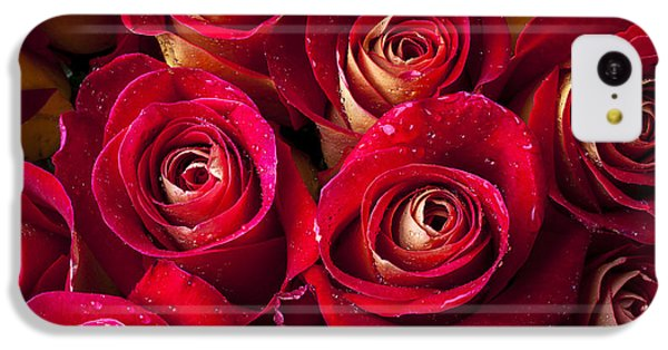 Rose iPhone 5c Case - Boutique Roses by Garry Gay