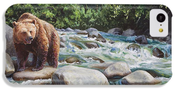 Brown Bear On The Little Susitna River IPhone 5c Case
