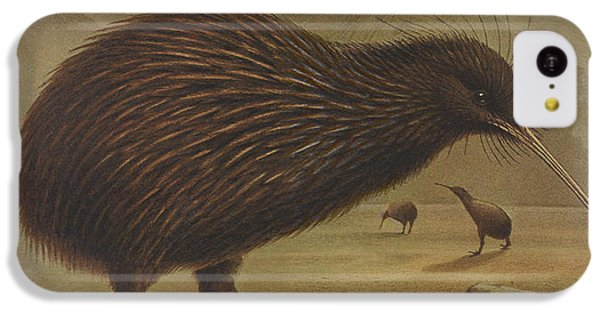 Brown Kiwi IPhone 5c Case by Rob Dreyer