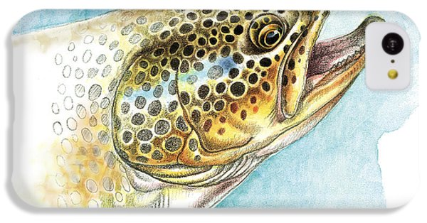 Trout iPhone 5c Case - Brown Trout Study by JQ Licensing