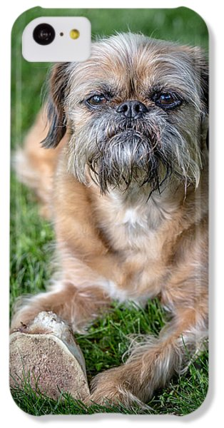 Griffon iPhone 5c Case - Brussels Griffon by Edward Fielding