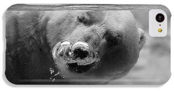 Polar Bear iPhone 5c Case - Bubbles by C.s. Tjandra