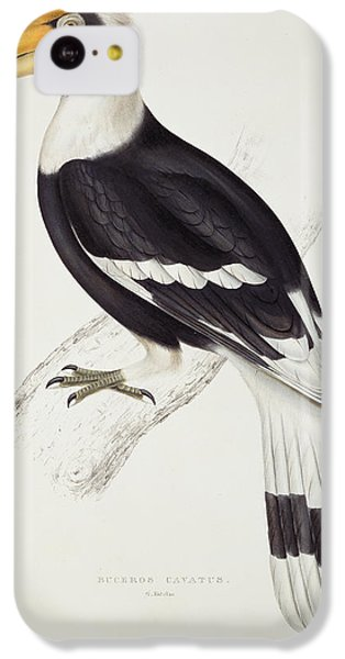 Great Hornbill IPhone 5c Case by John Gould